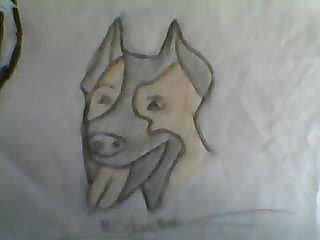 Dessin1: Doberman