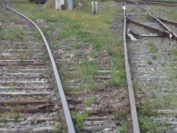 Escapade en gare de Vittel...