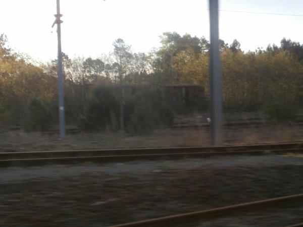 Escapade dans le Sud de la France ,région de Bordeaux..