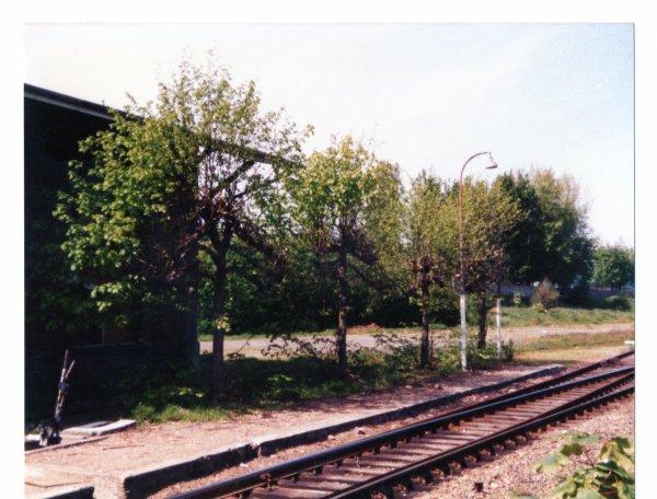 La gare de Rosendael ce 10 Aout 1991...1991.