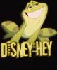 DISNEY-HEY