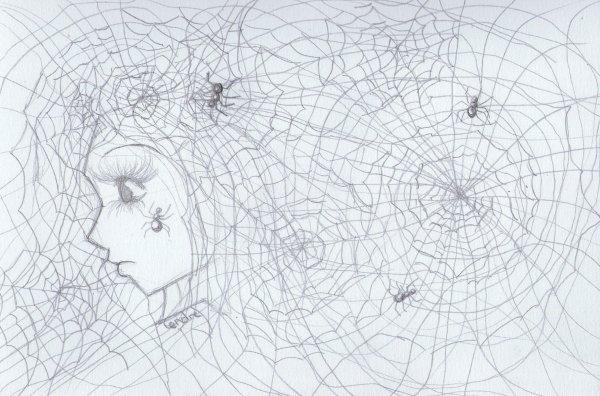 [ Illustra's : Croquis toiles d'araignées ]