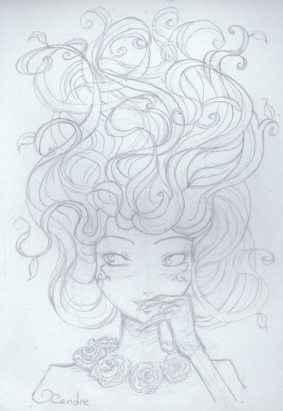 [ Illustra's ; Buisson-Hairs ]