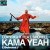 Kama Yeah (Roul & Doors Remix)
