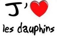 bonne journée ღ~•❤•~ღ I LOVE DOLPHINS ღ~•❤•~ღ