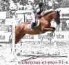 x-chevaux-et-moi-31-x