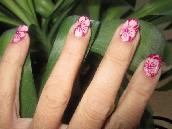 Fleurs hawaiennes