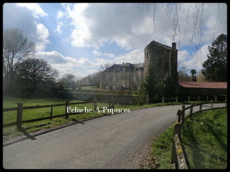 Superbe domaine à la Chataigneraie en Vendée.