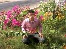Photo de hichamdu92