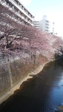 photos posté sur le blog de Yuki