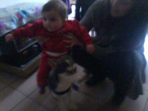 ma fille sur le chien de ma bel soeur