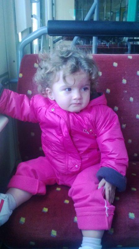 ma puce dans le tram