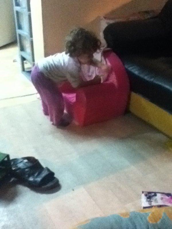 ma puce ki va s asseoir sur son fauteuil