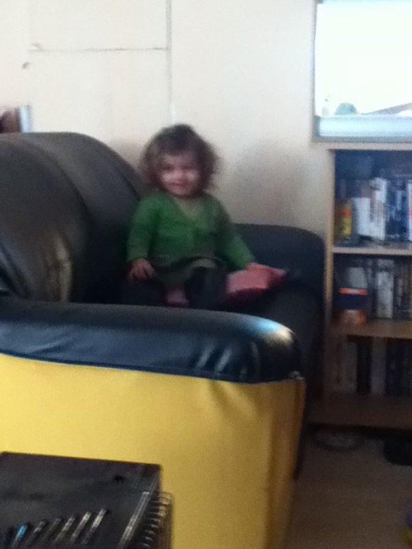 ma puce dans le fauteuil