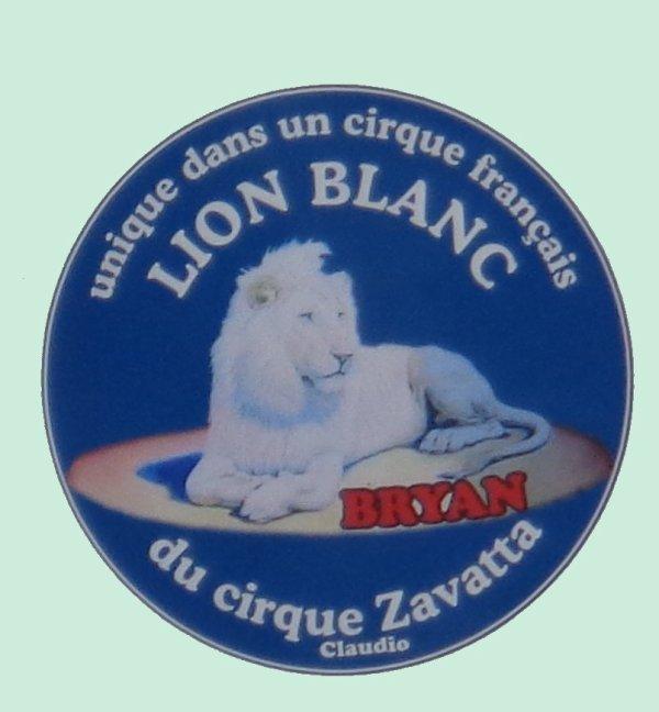 REPORTAGE SUR LE CIRQUE CLAUDIO ZAVATTA AUX SABLES D'OLONNE ... BONUS
