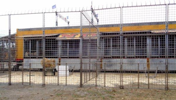 REPORTAGE SUR LE CIRQUE PINDER AUX SABLES D'OLONNE EN 2016... LES ANIMAUX (2)