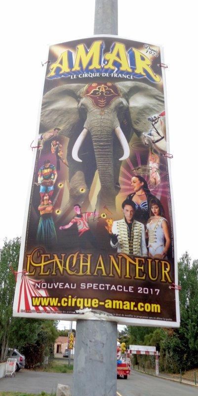 CIRQUE AMAR 2017 : EPISODE 12 : AMAR, LE ROI DE L'AFFICHAGE !