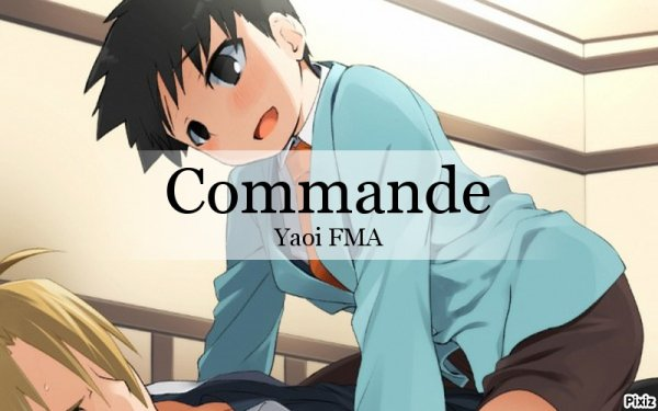 commande yaoi FMA !