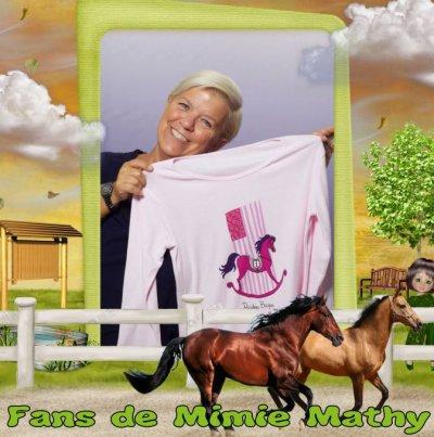 N° 272 : Le prix d'Amérique Marionnaud 2011