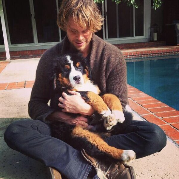 Éric Christian Olsen & Dogs