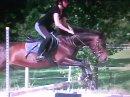 Photo de horse-lovedu50