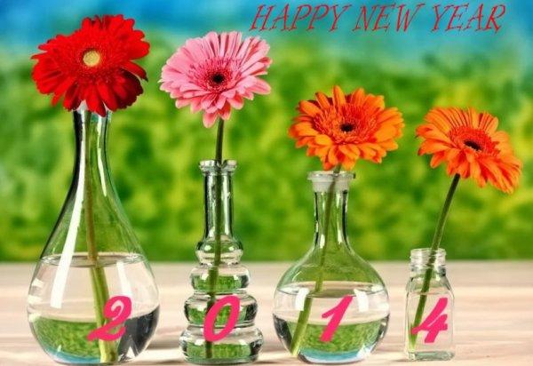 Bonne année 2014 a tous et toutes, gros bisous............