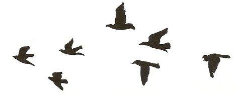 [c=#000000][align=center].[/align][/c] [font=georgia][i][size=16px][align=center][i]On peut juger de la beauté d'un livre à la vigueur des coups de poings [align=center] qu'il vous donne et à la longueur du temps qu'on met ensuite à en revenir. [c=#000000][align=center].[/align][/c]