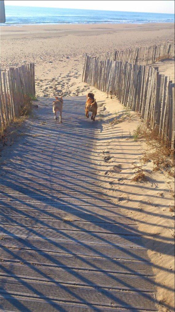 Go à la plage... :D
