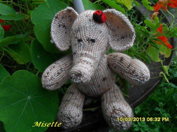 Mon petit n'éléphant !!
