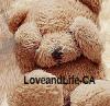 LoveandLife-CA
