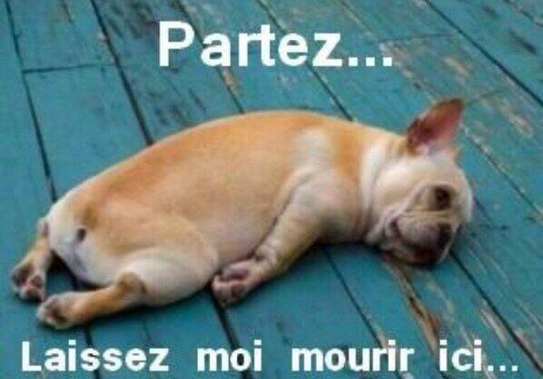 Quand j'ai vue qu'il n' y avait plus de place pour le concert des one direction à Paris
