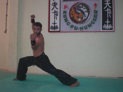 hunggar kungfu