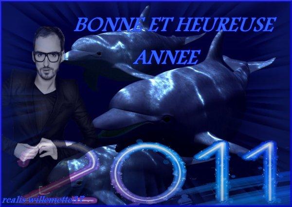 BONNE ET HEUREUSE ANNEE 2011 ! ♥♥♥