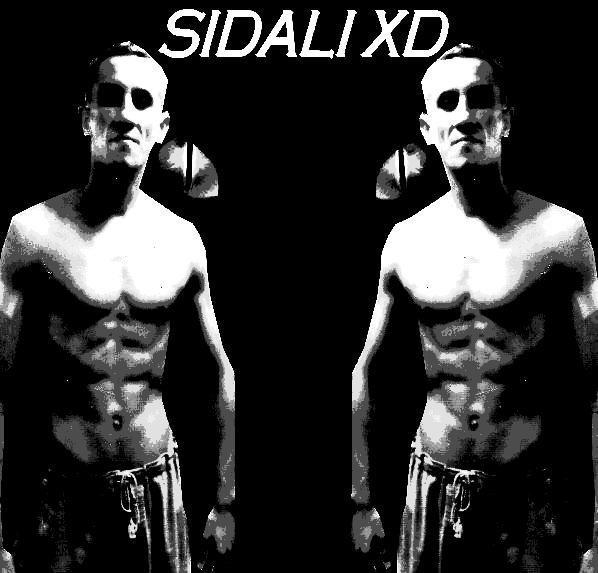 Blog de sidali--the--best