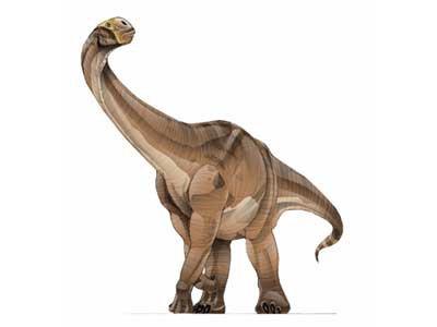 Cétiosaurus
