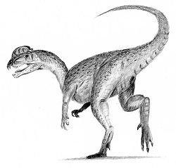 dilophosaurus dans jurassik park