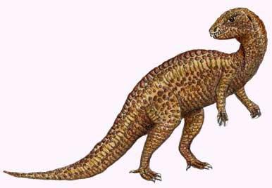Hétérodontosaurus