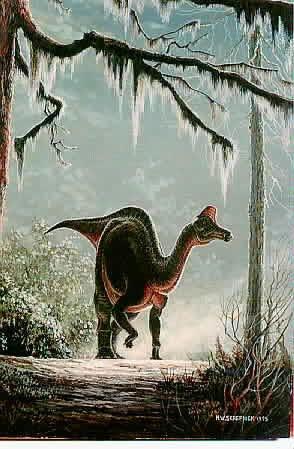 Lambéosaurus