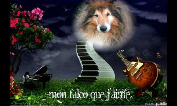 Mon Falco