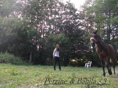 L'équitation, une passion... <3