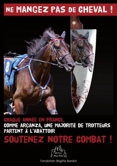 dite  non a l'ippophagie !  soutenez l'association de brigitte bardot !!!!