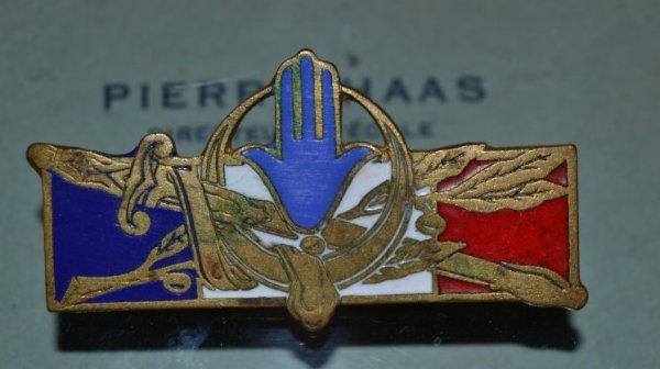 Insigne des Forces Françaises en   A.F.N.