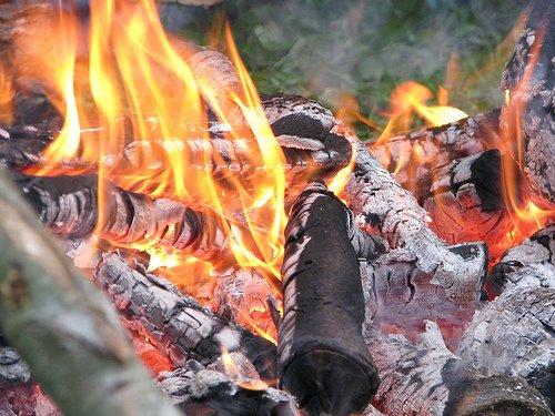 Abū Hurairah (r.a.) raconte que le Saint Prophète Muhammad ( صلى الله عليه وسلم) a dit : « Méfiez-vous de la jalousie, car elle consume les bonnes oeuvres tout comme le feu consume le bois ou la paille. » Abū Dāwūd Kitāb-Ul-Adab