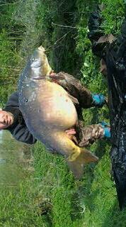 21 kg en canal ;-)