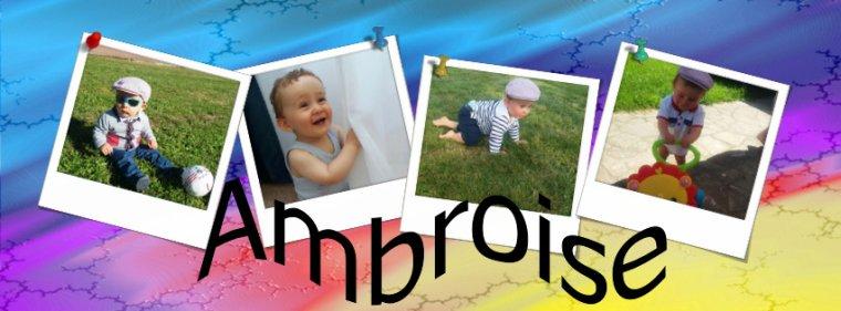 Fin d'accueil pour mon petit Ambroise