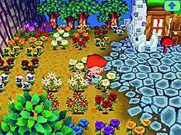 Le Concours Floral !
