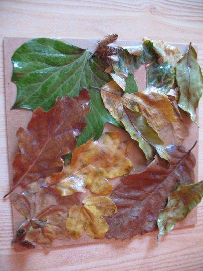 Les feuilles d'autome (suite)