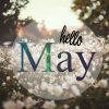 Hello May ; Commande On Short Terminer.