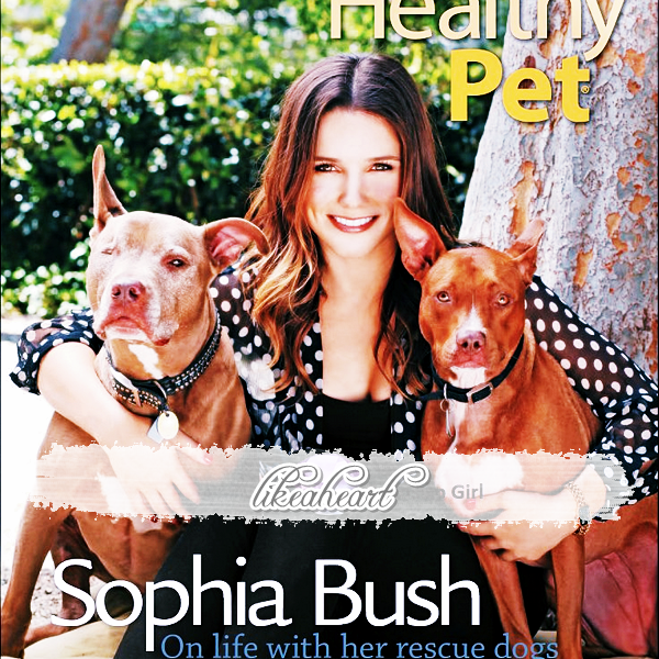 --------- ♦_Rattrapage de news ! Sophia de sortie. + Photoshoot .---------