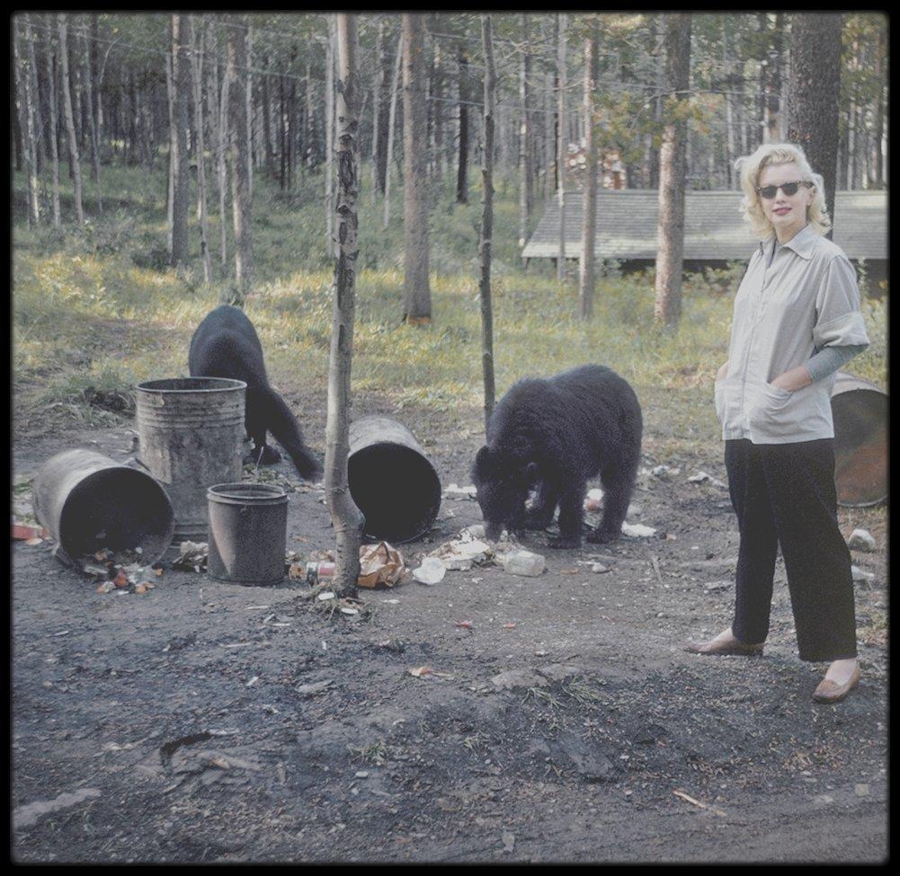 """1953 / Photo Allan SNYDER, Marilyn au Canada pour les extérieurs de """"River of no return"""""""